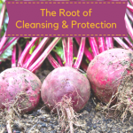 Red Beets – The Root of Cleansing and Protection