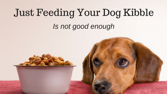 Just Feeding Your Dog Kibble