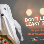 Don't let Leaky Gut be your Dog's Health Monster