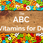 The ABC of Vitamins for Dogs