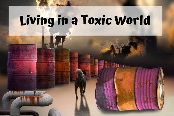 Living in a Toxic World