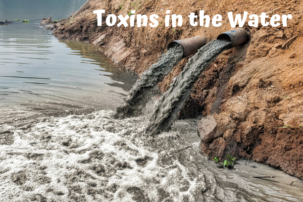 Toxins in the Water