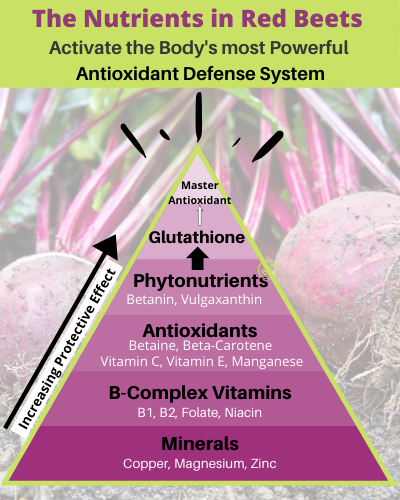 Antioxidant Defense System