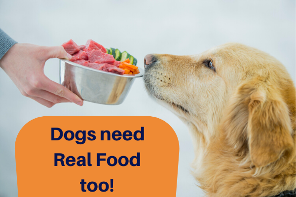Dogs need Real Food too