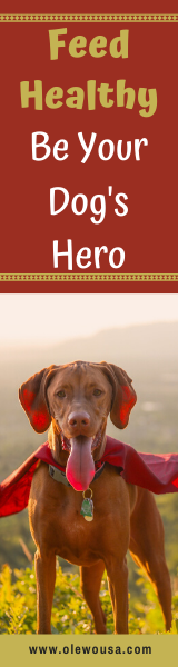 Dog Health - Be Your Dog's Hero