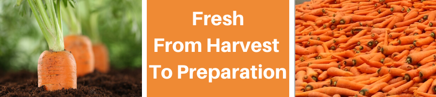 From Harvest to Preparation
