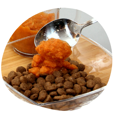 easy to prepare carrots for dogs