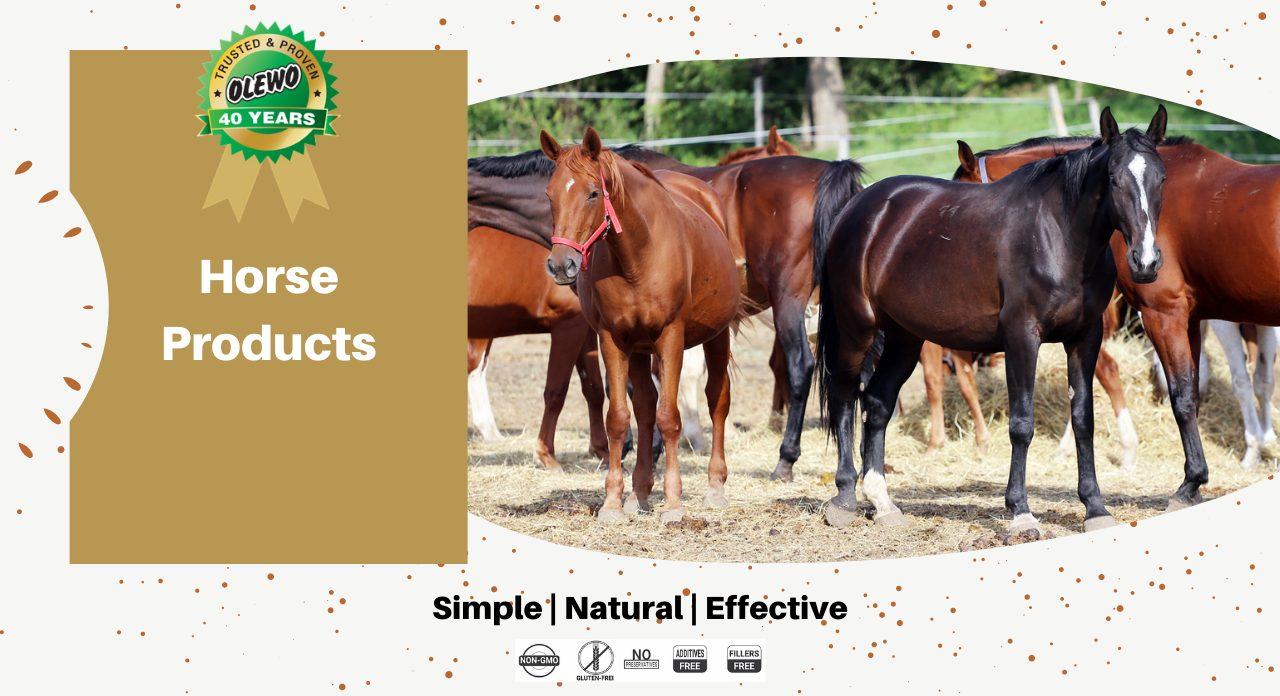 olewo horse products page