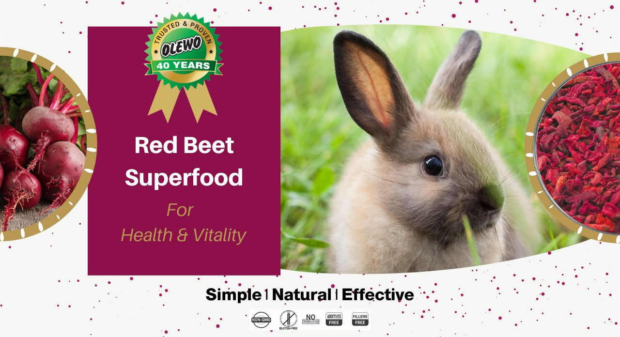 beets for small animals