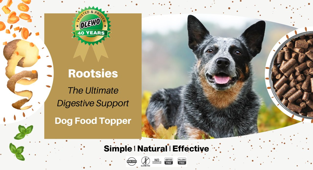 rootsies dig food topper page